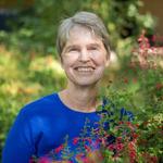 Julie Stromberg