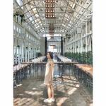 Amy Tai Tai
