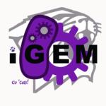 Northwestern iGEM Team