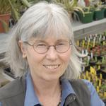 Cathy Cripps, PhD