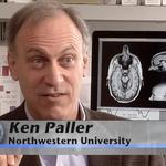 Ken Paller
