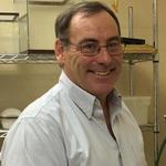 Eric P. Benson, Ph.D.