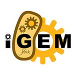 iGEM York