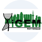 iGEM Rotterdam