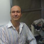 James J. Celentano